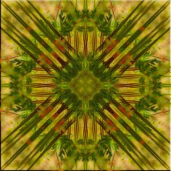 Pattern_Spiky